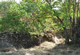 Eικόνα από παλαιό Ντιχούνι