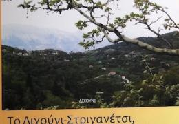 ΔΙΧΟΥΝΙ 2918